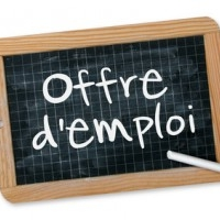 Avis recrutement RESPONSABLE DE VOLET DISTRIBUTION